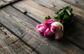 既婚者への恋◆訳アリの恋は叶う?≪不安/戸惑い/恋愛感情≫相手の本当の気持ち占
